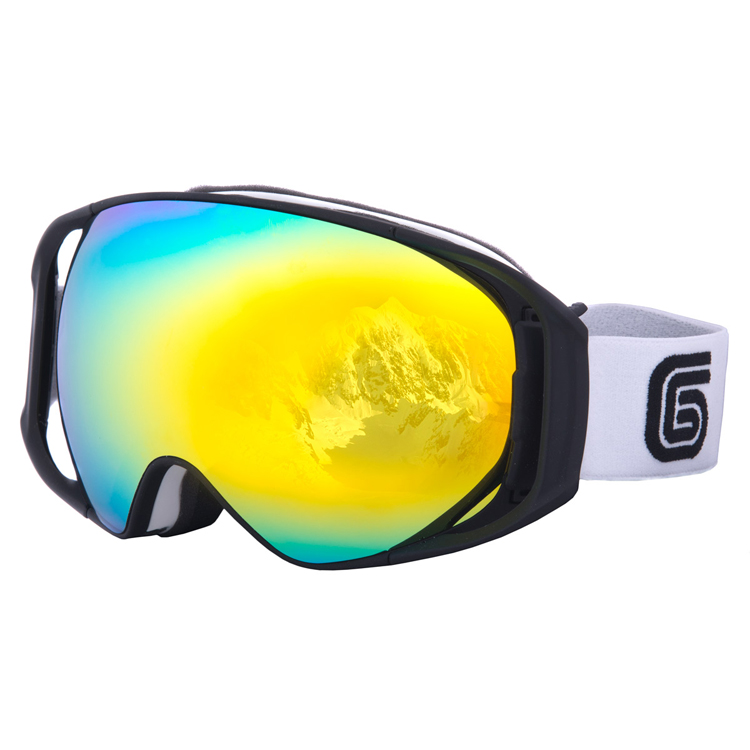 Valdez Whiteout Goggle